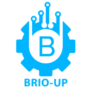 Brio-up-Virtual assistant services